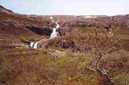 Waterfall in Mjóafjörð