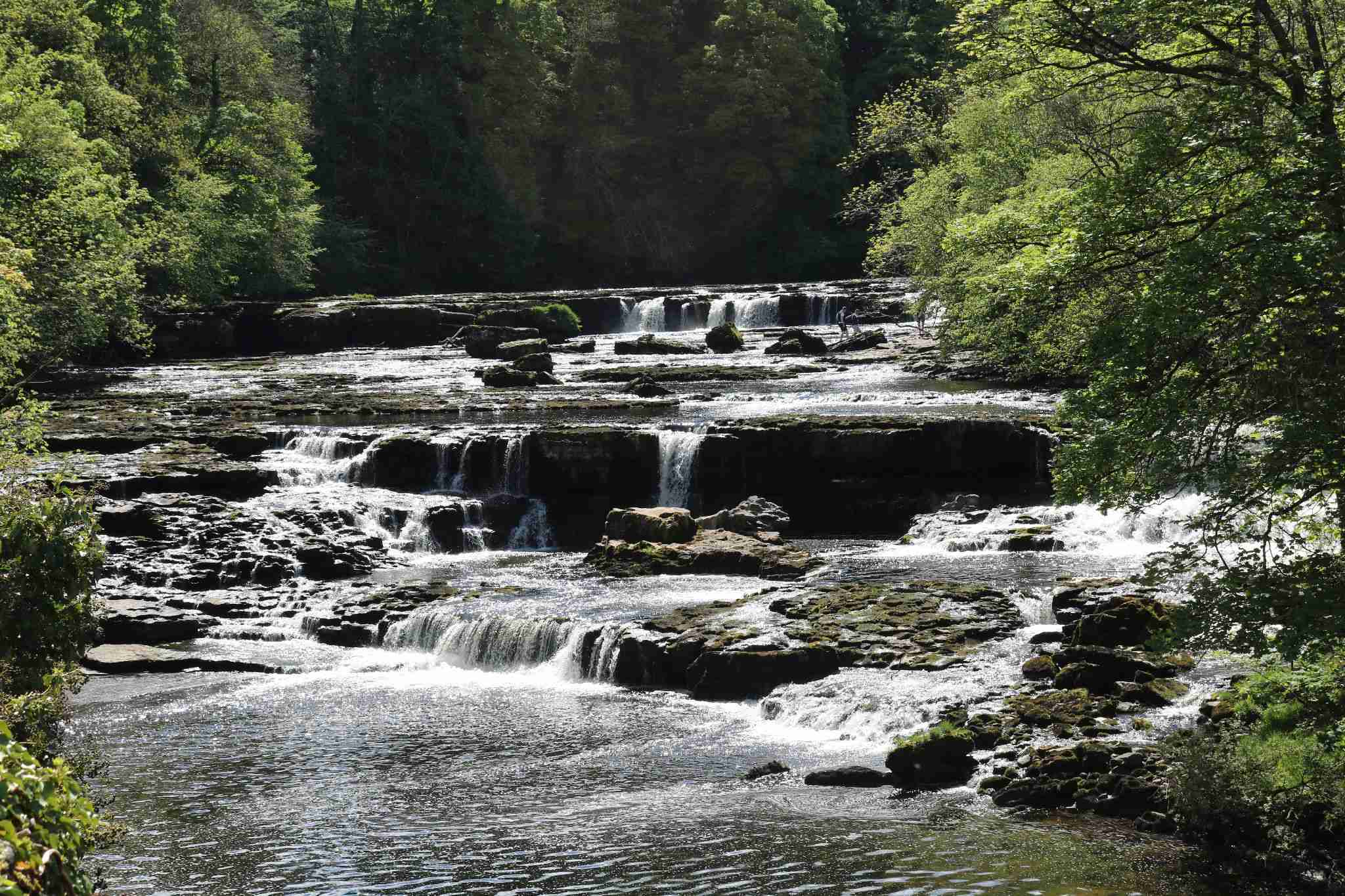 Upper falls in river Ure