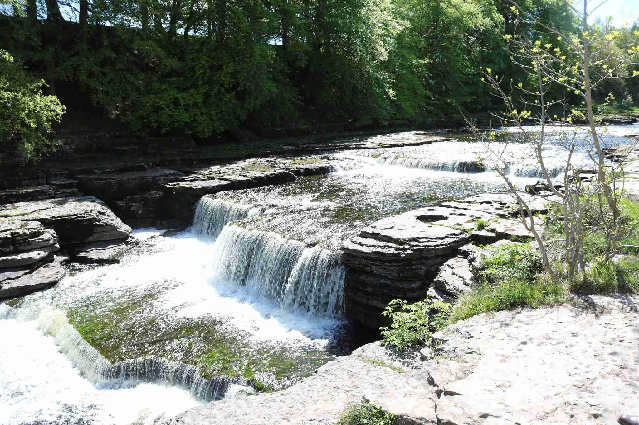 Lower falls in river Ure